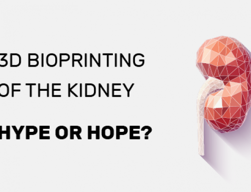 3D bioprinting of the kidney — hype or hope?