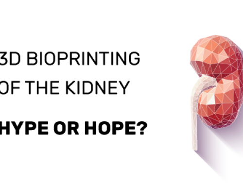 3D bioprinting of the kidney—hype or hope?