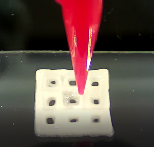 Bioprinted Grid