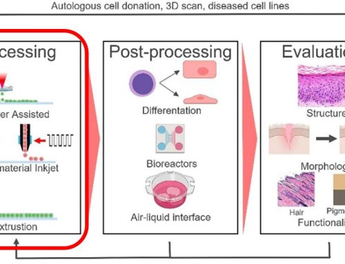 What is Bioprinting – Part 4 of 6: Optimization of Printing Parameters